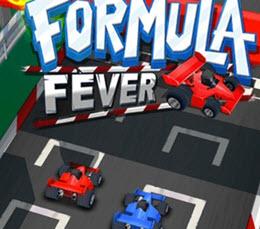 Formula Heyecanı