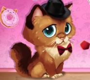 Sevimli Kedim