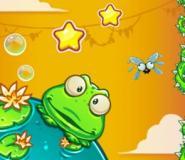 Sevimli Kurbağacık